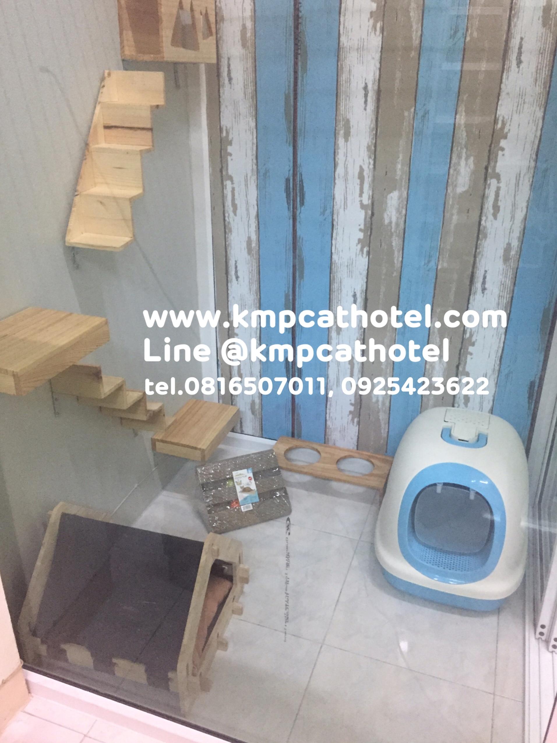 โรงแรมแมว KMP Cat Hotel