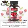 แครนเบอร์รี่ cranberry 50000 mg