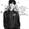 SUPER JUNIOR : YESUNG - Mini Album Vol.2 [Spring Falling] Normal Edition