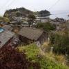 10 เกาะแมวในญี่ปุ่นที่นักท่องเที่ยวนิยมไปกัน