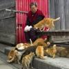 เกาะแมวในญี่ปุ่น ตอนที่ 1