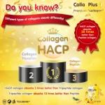 Colla Plus Collagen English Version