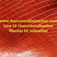 ร้านThai Crocodile Leather