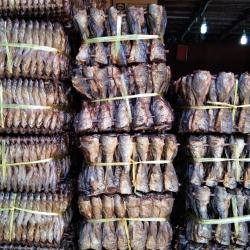 """""""ประฮ็อก"""" (Prahok) ปลากรอบ ปลาในแม่น้ำโขงกับแม่น้ำโตนเลสาปชานกรุงพนมเปญ"""