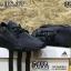 รองเท้า adidas NMD thumbnail 6