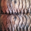"""""""ประฮ็อก"""" (Prahok) ปลากรอบ ปลาในแม่น้ำโขงกับแม่น้ำโตนเลสาปชานกรุงพนมเปญ thumbnail 8"""