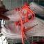 สั่งคัด รองเท้าผ้าใบ มือสอง สภาพคัด งานป้าย ตลาดโรงเกลือ thumbnail 69