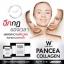 Pancea Collagen แพนเซีย คอลลาเจน ฉีกกฎของเวลา บอกลาความเหี่ยวย่นและความหมองคล้ำ ด้วยแพนเซีย คอลลาเจน thumbnail 7