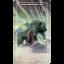 Ostara Tarot (Box Set) thumbnail 78