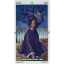 Wheel Of The Year Tarot (Box Deck) thumbnail 76