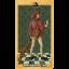 Medieval Tarot (Box Deck) thumbnail 64