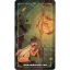 Ostara Tarot (Box Set) thumbnail 55