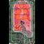 Ostara Tarot (Box Set) thumbnail 71
