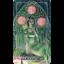Ostara Tarot (Box Set) thumbnail 69