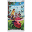 Wheel Of The Year Tarot (Box Deck) thumbnail 34
