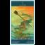 Tarot of Mermaids (Box Deck) thumbnail 54