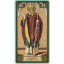 Voices Of Saints Tarot (Box Deck) thumbnail 45
