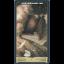 Dark Grimoire Tarot (Box Deck) thumbnail 41